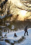 зима парка малыша отца Стоковая Фотография RF