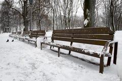 зима парка стенда пустая Стоковое фото RF
