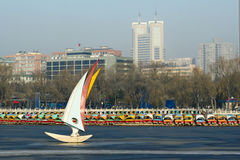 зима парка Стоковое фото RF