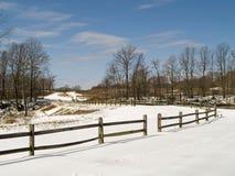 зима парка Стоковые Изображения RF