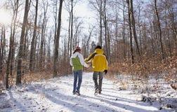 зима пар счастливая Стоковые Изображения RF