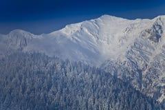 зима пейзажа горы Стоковое Изображение RF
