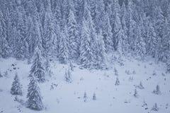 зима пейзажа горы Стоковые Фотографии RF