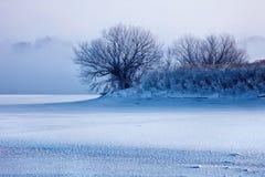 зима пейзажа Стоковые Изображения RF