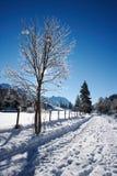 зима пейзажа Стоковые Фото
