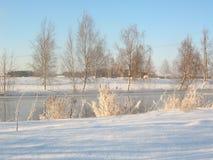 зима пейзажа Стоковая Фотография