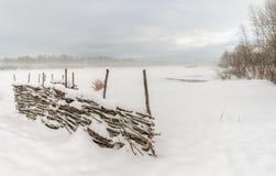 Зима первый снежок Стоковые Изображения