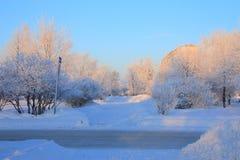 зима переулка Стоковое Изображение RF