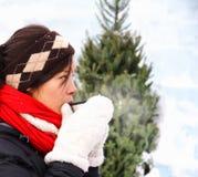 зима питья горячая Стоковое фото RF