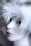 зима повелительницы Стоковое фото RF