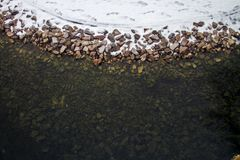 Зима покрыла долину в Spearfish, SD Вода в этом пруде не замерзнет Стоковое Фото