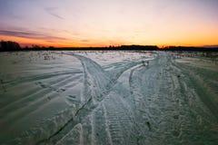 зима поля Стоковое Фото