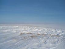 зима поля Стоковое Изображение