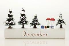 Зима постоянный посетитель в декабре, который нужно использовать празднует фестиваль Использованный как концепция праздника Стоковые Изображения RF