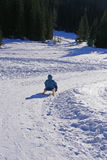 зима потехи Стоковое Фото