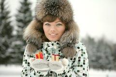 зима праздника Стоковые Изображения RF