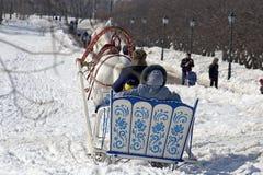 зима праздника Стоковое Фото