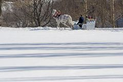 зима праздника Стоковые Фото