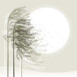 зима предпосылки камышовая Стоковые Изображения