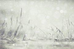 зима предпосылки с снегом Стоковое Изображение