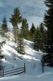 зима природы Стоковое Изображение