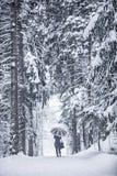 зима прогулки сынка мумии зеленой куртки отца пальто голубой крышки берета красная идя снег Стоковое Фото