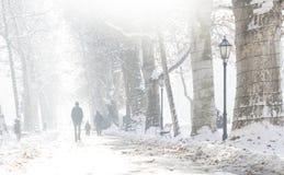зима прогулки сынка мумии зеленой куртки отца пальто голубой крышки берета красная идя снег Стоковая Фотография RF