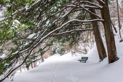 зима прогулки сынка мумии зеленой куртки отца пальто голубой крышки берета красная идя снег стоковые изображения rf