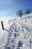 зима проселочной дороги Стоковое фото RF