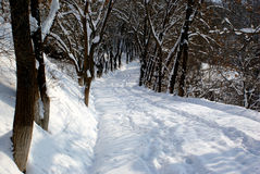 зима прохода Стоковые Изображения