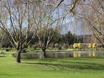 зима пруда сада Стоковые Изображения
