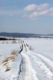 зима путя Стоковое фото RF
