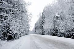 зима путя стоковые фотографии rf