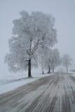 зима путя Стоковая Фотография