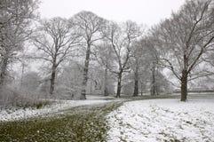 зима путя Стоковое Фото