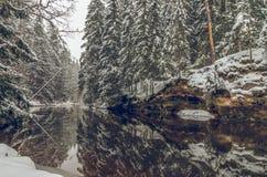 Зима рекой стоковое фото