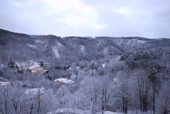 зима республики холмов пущи chezh Стоковые Изображения