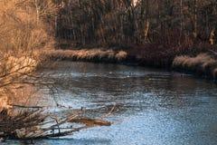 зима речной воды ландшафта льда свободного полета Стоковое Изображение