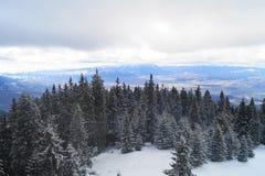 зима Румынии ландшафта Стоковая Фотография RF