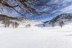 зима Румынии стоковые фото