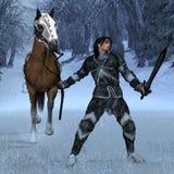 зима рыцаря Стоковые Фотографии RF
