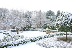 зима сада стоковое фото rf
