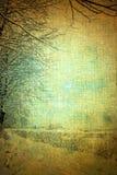 зима сбора винограда Стоковая Фотография RF