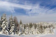 зима сказа снежка красивейшей пущи красная s коттеджа финской Стоковые Изображения