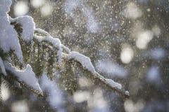 зима сказа снежка красивейшей пущи красная s коттеджа финской Стоковое Изображение