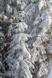 зима сказа снежка красивейшей пущи красная s коттеджа финской Стоковые Фотографии RF