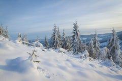 зима сказа снежка красивейшей пущи красная s коттеджа финской Стоковые Изображения RF