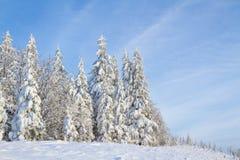зима сказа снежка красивейшей пущи красная s коттеджа финской Стоковое Фото