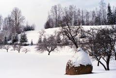 зима сказа Стоковая Фотография