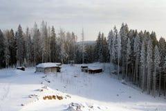 зима сказа s Стоковые Изображения RF